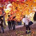 Photos: 秋を撮る、撮る、撮る