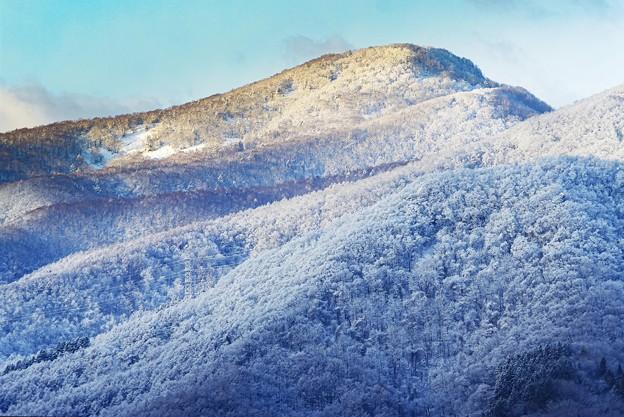 Photos: 雪化粧の朝