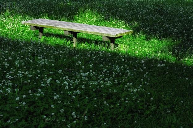 暖かいベンチ