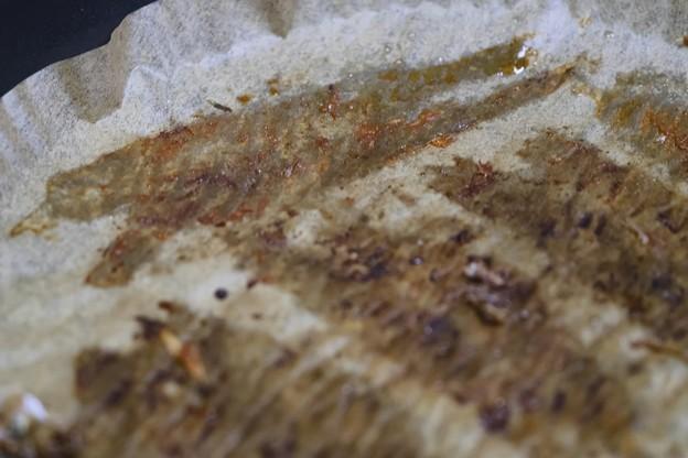 Photos: 柳葉魚を食らう