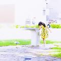 Photos: 「ナツコの夏」