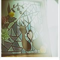 「黒猫の恋」