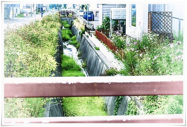 image 昭和/明渠を飾る