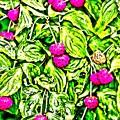 過日の果実/ヤマボウシ recipe3