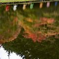Photos: the autumn season for art **