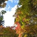 立ち昇る秋