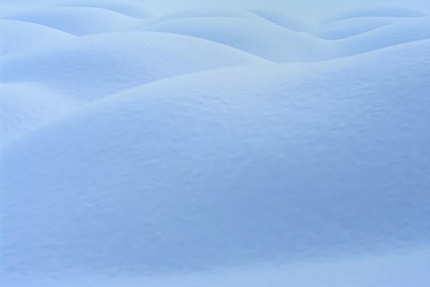snowscape vol.3 「蒼いヌードたち」