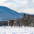 Photos: snowscape vol.4 「雪遊びの日」