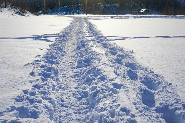 snowscape vol.2 「ラッセル」