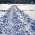 Photos: snowscape vol.2 「ラッセル」