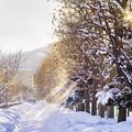 Photos: あの日...冬休みの通学路