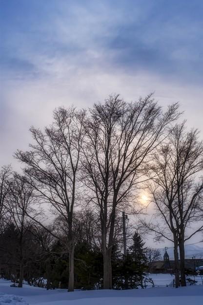 setting sun of the soft focus