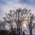 Photos: setting sun of the soft focus