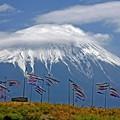 富士山を背に泳ぐ鯉のぼり