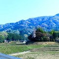 写真: 山桜の山並み