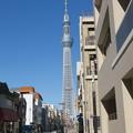 Photos: 裏通り