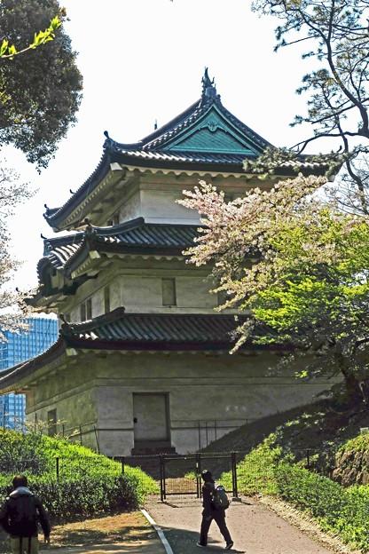 富士見櫓と桜