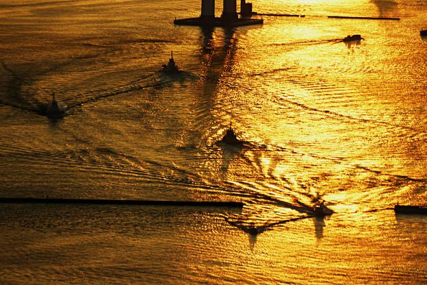 黄金色の水面_