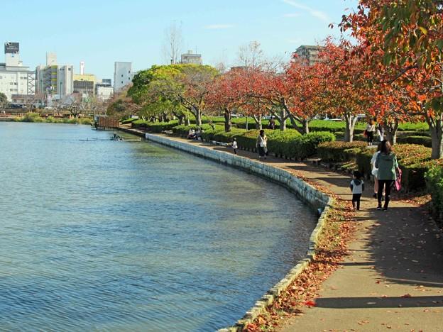 Photos: 千波湖湖畔