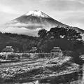 Photos: 昭和の忍野