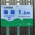 Photos: 海抜1メートル
