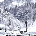 Photos: 雪の里山