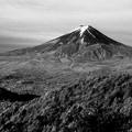 Photos: 富士山全貌