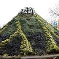 Photos: 富士山?