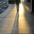 Photos: 日没の影