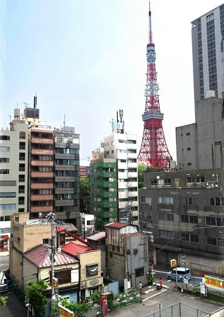 東京タワーの見える場所
