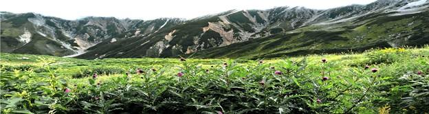 立山パノラマ展望