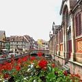 Photos: 花の街