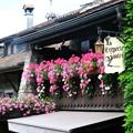 Photos: 花の街-三