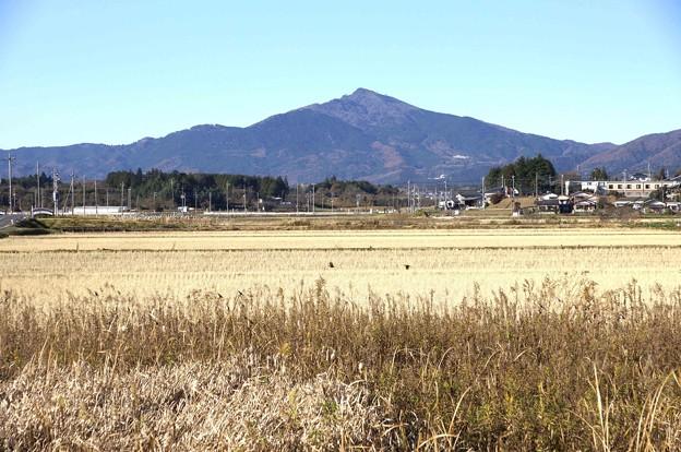 峰一つの筑波山