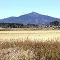 Photos: 峰一つの筑波山