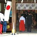 Photos: 吉日の日