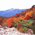 Photos: 秋の山