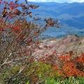 Photos: 晩秋の山