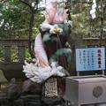 Photos: 江ノ島で