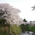 写真: 鶴ヶ城堀