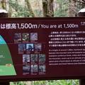 Photos: ここは標高1500m