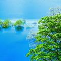 写真: 湖上の春