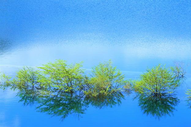 写真: 碧の湖面