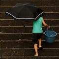 写真: 雨の日