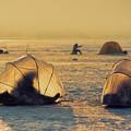 写真: 氷上のワカサギ釣り