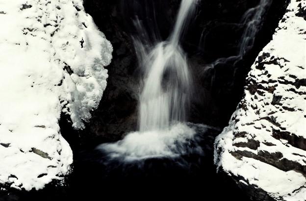 Photos: 冬の小滝