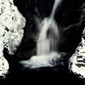 写真: 冬の小滝