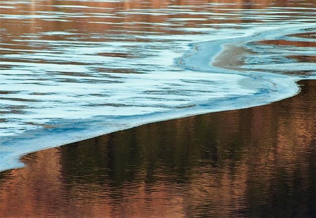 早春の湖畔