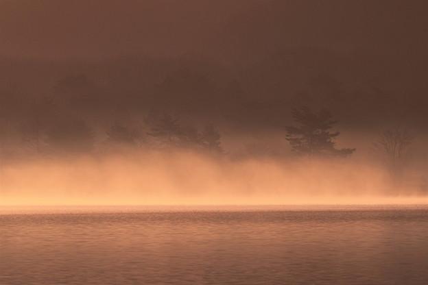 写真: 濃霧の朝