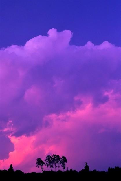 写真: 夏の雲